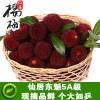 产地直销浙江仙居东魁特级杨梅新鲜水果仙居杨梅6月发货预定中