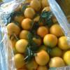水果批发市场