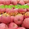 万亩红富士苹果销售基地今日红富士苹果供应价格