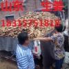 生姜批发价格,生姜产地,今日生姜批发价格18315751818