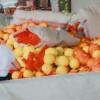 八里香甜瓜13333722211
