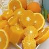 正宗奉节脐橙72-1