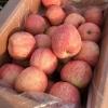 哪里的红富士苹果好吃口感好价格便宜