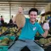 马来西亚猫山王榴莲D197液氮整果,10kg/箱