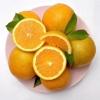 脐橙 秭归脐橙鲜果采摘