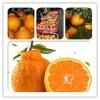 贵阳各种水果代销代办 13984335479 宗星果业