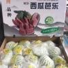 新建水果批发市场