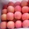 山东优质红富士苹果大量上市,货源充足保证质量